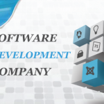 software dvelopment company