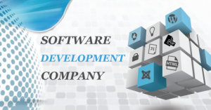 software)development_company - Copy